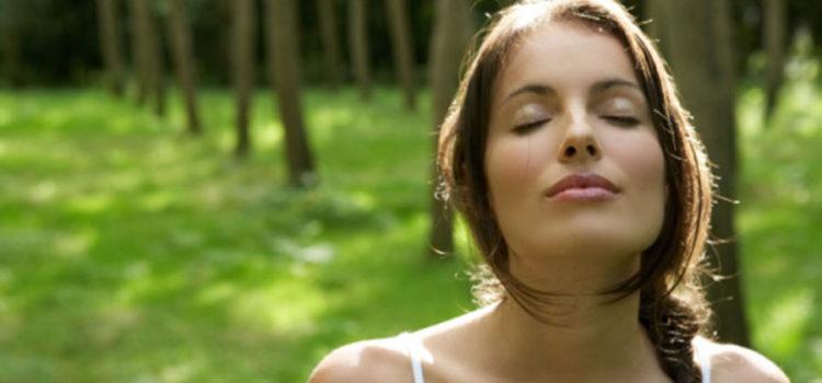 La natura incontra la meditazione