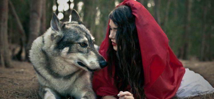 Covid 19: e se il lupo non fosse cattivo